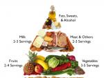 Ce inseamna alimentatie echilibrata?