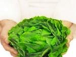 Cum ne protejam de nitratii prezenti in salata de vara?