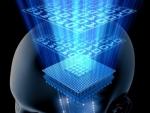 Cum se formeaza amintirile in creierul uman?