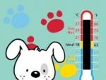 Temperatura in camera bebelusului