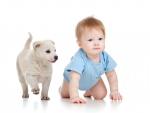 Cat de importante sunt animalele de companie pentru cei mici?