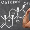 De ce este important testosteronul pentru viata unui barbat?