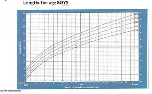 Curba de inaltime la baieti pana in 2 ani
