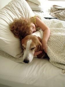 Importanta animalelor pentru copil