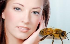 Tratament cu venin de albine